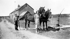 Photograph of Earl and Dora Swan with team of horses in front of barn.